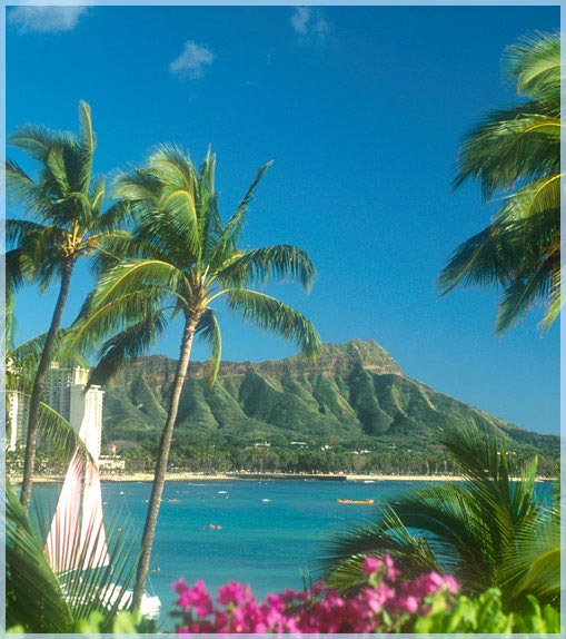 Hawaii Vacations and Travel Agent