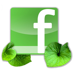 Folsom Travel Agent Facebook